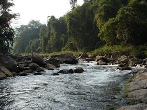 西双版纳热带雨林穿越四天三晚深度体验游