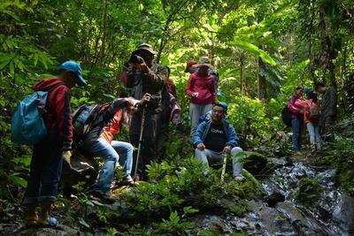 西双版纳雨林户外深度、村落、民俗、普洱古茶山休闲体验5天4晚之旅