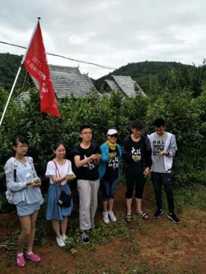 基诺山营地介绍