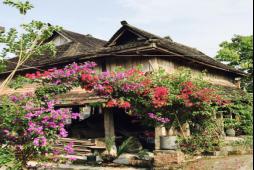 曼掌自然文化村营地